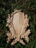 Panoplie caprior , fag , tap - 20x30cm vanatoare trofeu