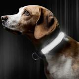 Zgarda reglabila LED pt caini sau animale de companie,ALB,M