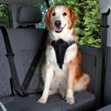 Centură de siguranță pentru câini - L