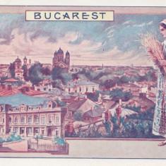 Carte Postala - Bucuresti - Vedere Generala - Palatul Regal - Reclama, Necirculata, Printata