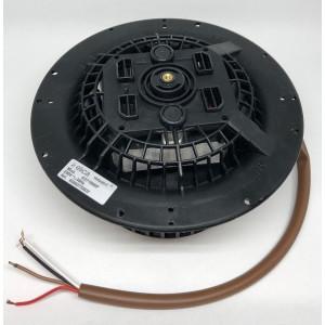 Motor hota UNIVERSAL 220V