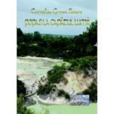 Popas la capatul lumii - Cornelia Grosu Soare