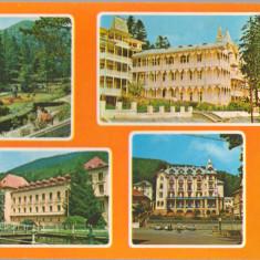 CPIB 15263 - CARTE POSTALA - SLANIC MOLDOVA, MOZAIC