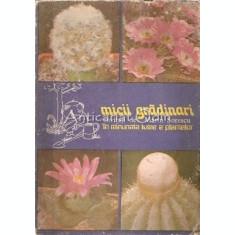 Micii Gradinari In Minunata Lume A Plantelor - S. Copacescu, B. Bobirnac