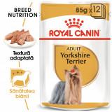 Cumpara ieftin Royal Canin YORKSHIRE TERRIER Hrana Umeda Caine