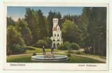 cp Vatra Dornei : Izvorul Sentinela - circulata 1931