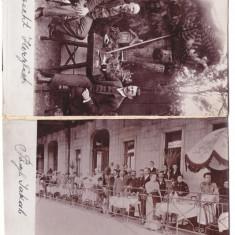 4717 - TIMISOARA, Terasa Restaurant, Romania - old postcard - used - 1903, Circulata, Printata