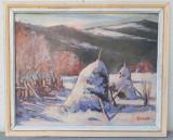 Peisaj de iarna la tara - Virgil Salantiu