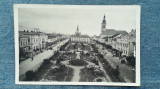 70 - Marmarossziget Foter - Parkreszlet Sighetu Marmației / carte postala, Circulata, Fotografie