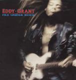 VINIL Eddy Grant – File Under Rock (VG+)