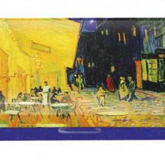 Etui ochelari Fridolin Van Gogh