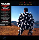 Pink Floyd Delicate Sound Of Thunder LP 2017 (2vinyl)