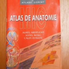 MIC ATLAS DE ANATOMIE de AUREL ARDELEAN , IONEL ROSU , CALIN ISTRATE