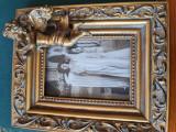 Cumpara ieftin Principesa maria, carte postala fotografica, Circulata, Fotografie