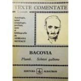 G. Bacovia - Plumb. Scîntei galbene ( TEXTE COMENTATE )