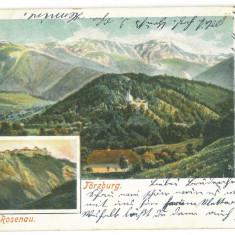 2498 - BRAN, RASNOV, Brasov, Litho, Romania - old postcard - used - 1903