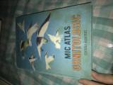 Mic atlas ornitologic D. Radu