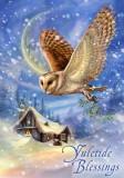 Cumpara ieftin Felicitare Crăciun cu bufnita Yuletide Blessings