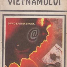 Soarele maroniu al Vietnamului - Din jurnalul unui agent C.I.A.