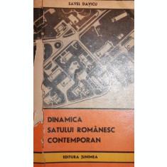 DINAMICA SATULUI ROMANESC CONTEMPORAN - SAVEL DAVICU