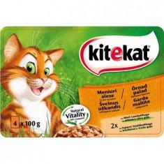 Hrana umeda pentru pisici Meniuri Alese, Kitekat, 4x100g