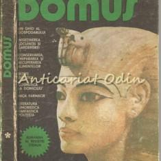 Domus. Un Ghid Al Gospodarului - Revista Steaua