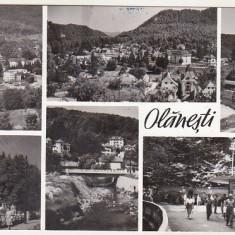 bnk cp Olanesti - Vedere - uzata