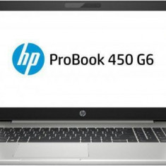 Laptop HP ProBook 450 G6 (Procesor Intel® Core™ i5-8265U (6M Cache, up to 3.90 GHz), Whiskey Lake, 15.6inch FHD, 8GB, 1TB HDD @5400RPM, nVidia GeForce