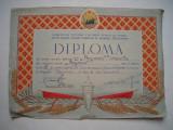Diploma Comitetul pentru Cultura Fizica si Sport, 1953, tenis de masa