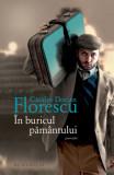 In buricul pamantului, Catalin Dorian Florescu