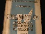 MIHNEA VODA CEL RAU-DOAMNA CHIAJNA-MOTII- CURCANII-POETII VACARESTI-ED-II-A-