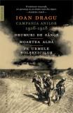 Cumpara ieftin Campania anilor 1916–1918. Drumuri de sânge. Moartea albă. Pe urmele bolșevicilor