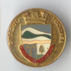 Insigna Orasul Pucioasa - Heraldica
