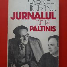 JURNALUL DE LA PALTINIS × GABRIEL LIICEANU