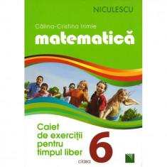 Matematica. Caiet de exercitii pentru timpul liber. Clasa a VI-a - Calina-Cristina Irimie