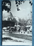 395 - Poiana Tapului, Vedere spre Bucegi / cp RPR circulata 1958, Necirculata, Fotografie