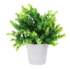 Planta artificiala decorativa cu frunza rotunjita H 24 cm in ghiveci plastic alb 8.5x9cm