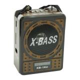 Radio MP3 Waxiba XB-16U, ceas LCD