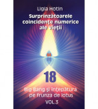 Surprinzatoarele coincidente numerice ale vietii - VOL. 3, Ligia Hotin