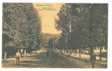 4760 - RAMNICU-VALCEA,  Ave. Tudor Vladimirescu, Romania - old postcard - unused