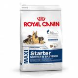 Cumpara ieftin Royal Canin Maxi Starter