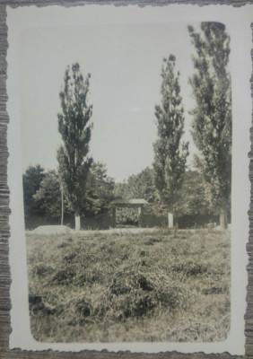 Ograda si poarta taraneasca din lemn/ foto Romania interbelica foto