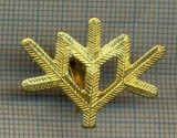 Y 1769 INSIGNA - MILITARA -SEMN DE ARMA -VANATORI DE MUNTE  -PENTRU COLECTIONARI