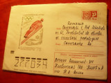 Plic ilustrat -Olimpiada de Iarna Sapporo 1972 , circulat URSS-Bucuresti