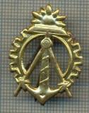 Y 1736 INSIGNA - MILITARA -SEMN DE ARMA - GENIU  -PENTRU COLECTIONARI