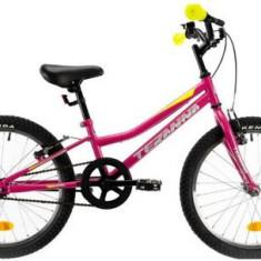 Bicicleta Copii DHS Teranna 2004, Cadru 20inch, Roti 20inch, Frane V-Brake (Roz)
