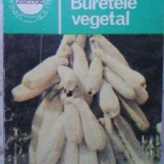 BURETELE VEGETAL - I. ROVENTA, I. BUHUS, N. IACOB, D. BECERESCU