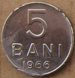 5 Bani 1966