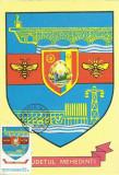 TSV* - MAXIMA MEHEDINTI - STEMA JUDETULUI HERALDICA `78 STAMPILA 1