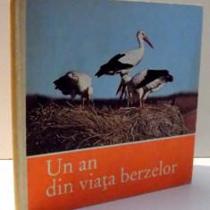 UN AN DIN VIATA BERZELOR de CLAUS SCHONERT , 1981 *PREZINTA HALOURI DE APA